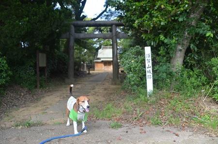 20150523須賀山城址33