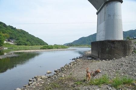 20150514相模湖八景 小倉橋20