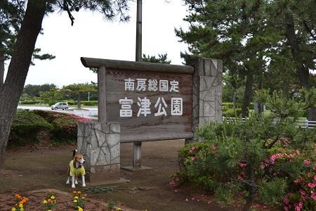 20150605富津公園04