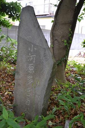 20150605富津陣屋跡10