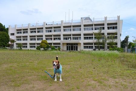 20150611東小学校11