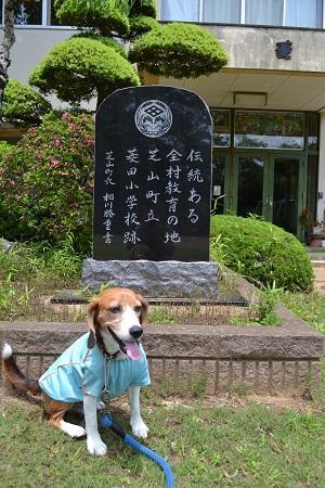 20150611菱田小学校12