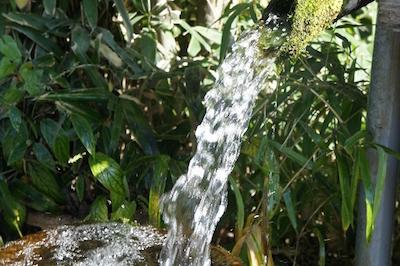 勢いよく流れる天然水