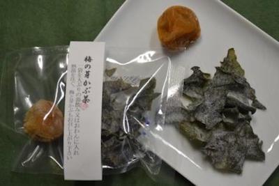欄干橋ちん里うの梅の芽かぶ茶