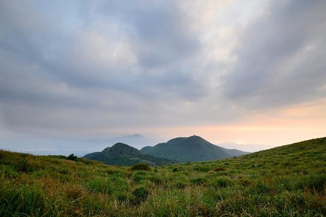 コジュケイが棲む山(3)