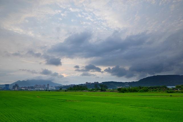 平原を渡る雲