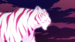 猫物語(白)015