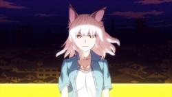 猫物語(白)016
