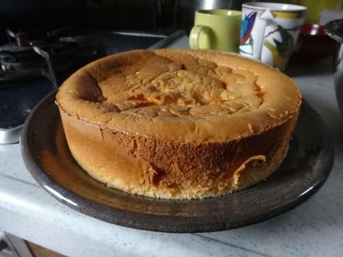 チーズケーキ2010
