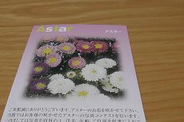 2015-3yokohamastep12.jpg