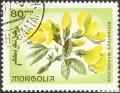 stmgl9901.jpg