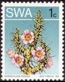 stswaf0101.jpg
