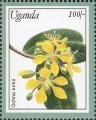stuga0212.jpg
