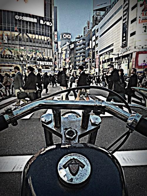IMG_1750.jpg