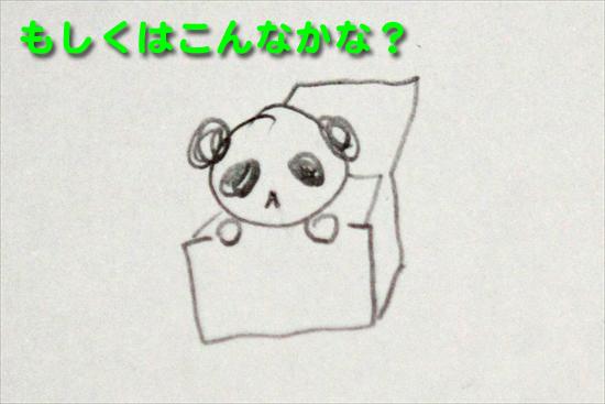 IMG_0164パンダ入り箱_Rのコピー