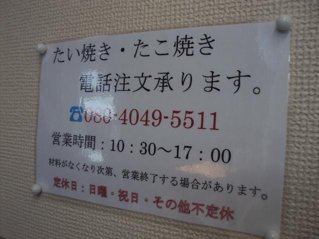 DSC06394.jpg