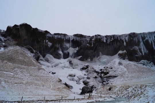 ほぼ凍結している滝