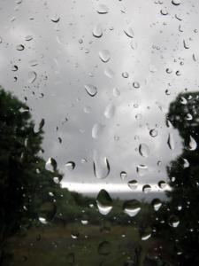 150608-32=雨滴の大窓と前庭