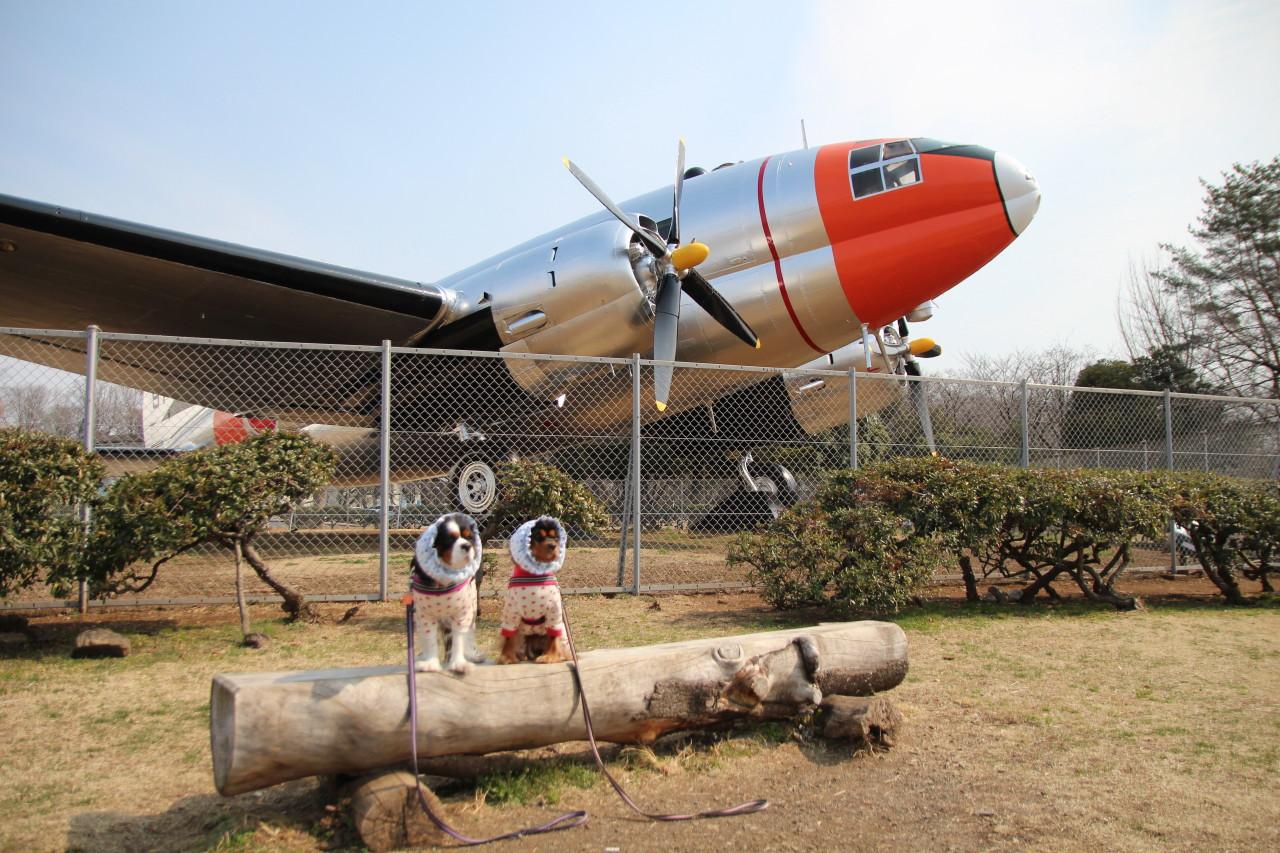 0314航空公園