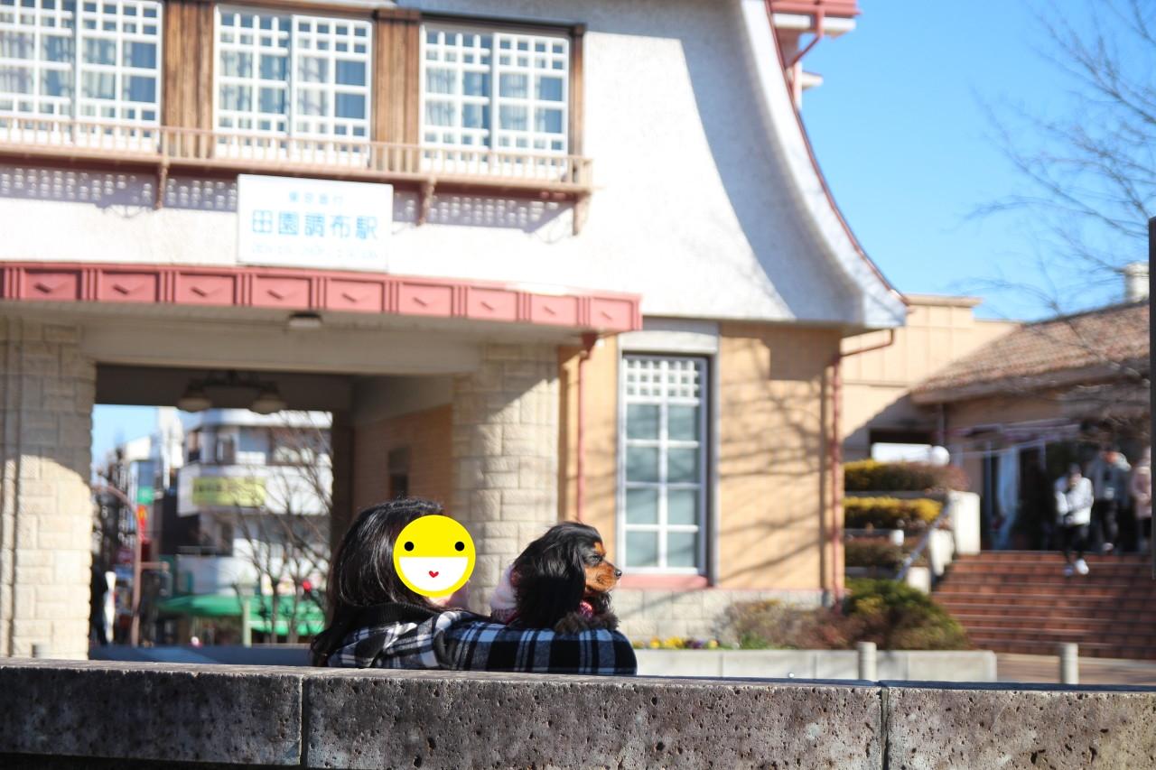 0201田園茶房
