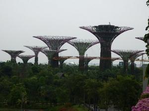 P5010952 201504シンガポール