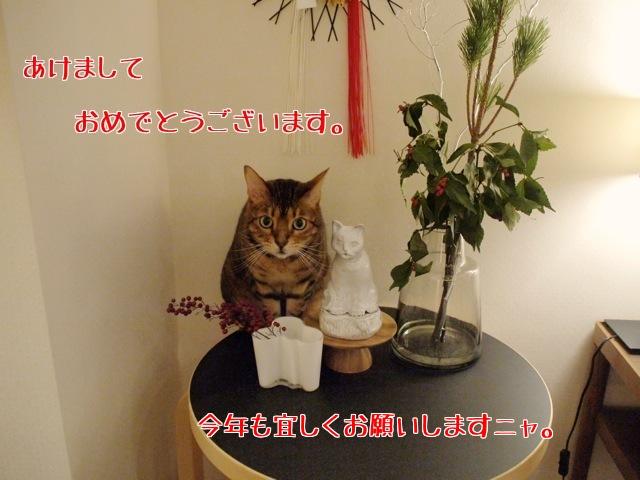 4vCCnDtCDSVYLyu1420132652_1420132789.jpg