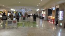 20141227_横浜ー小田原歩き14