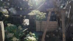 20141227_横浜ー小田原歩き11