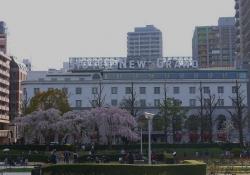 20150328_山下公園界隈3