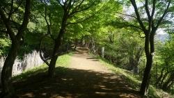 20150502_塔ノ岳-丹沢山2