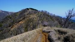 20150502_塔ノ岳-丹沢山7