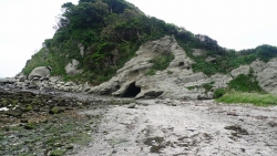 20150517_三浦岩礁の道9