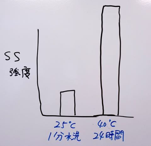 DSC08292.jpg