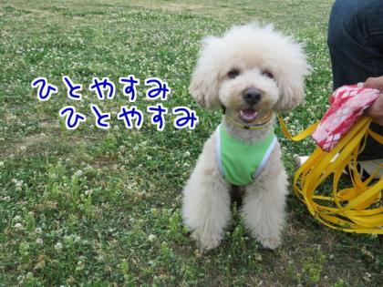 二太2015/05/31-7-ハルくん
