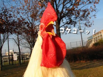 二太2015/01/04-4