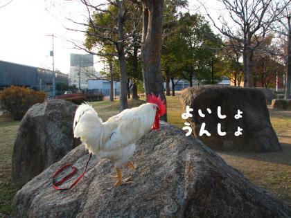 二太2015/01/05-2