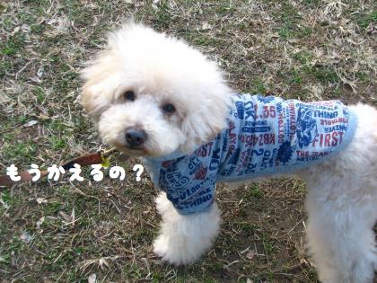二太2015/01/05-6
