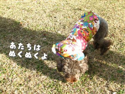 二太2015/01/07-3