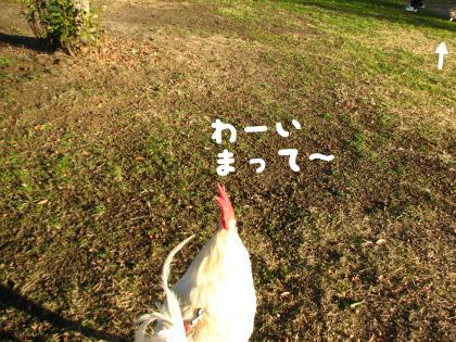 二太2015/01/07-6