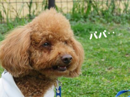 二太2015/03/18-4ーマッキーくん