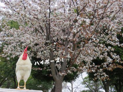 二太2015/04/03-2