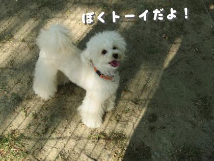 二太2015/05/02-5