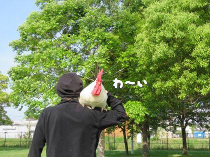 二太2015/05/06-3