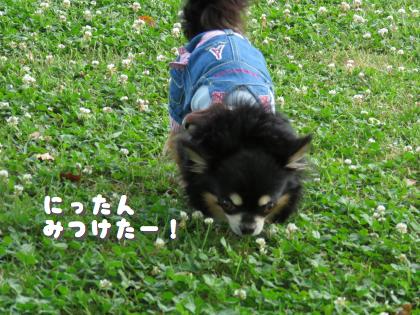 二太2015/05/08-2