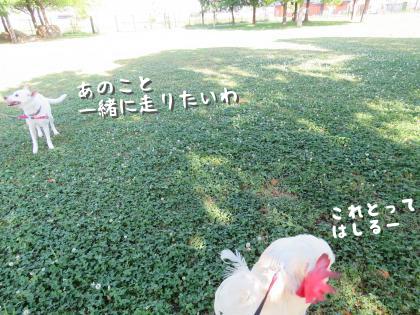 二太2015/05/14-3