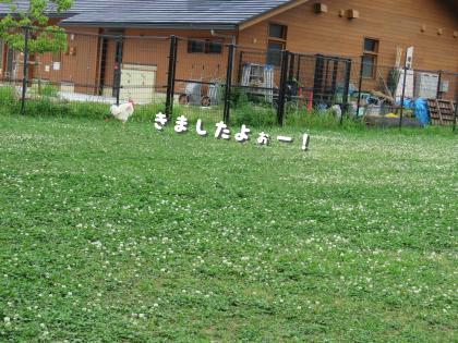 二太2015/05/16-4