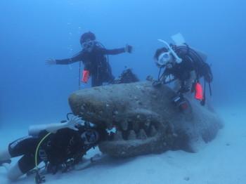 2015年3月27日ジンベエザメ、タオ島