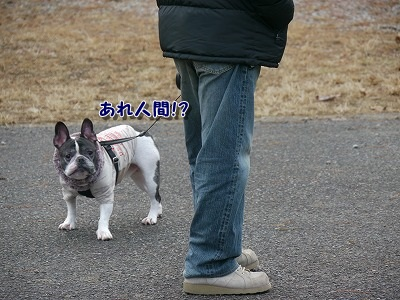 鹿ケ壺 (4)