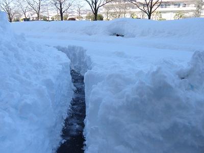 昨年の大雪