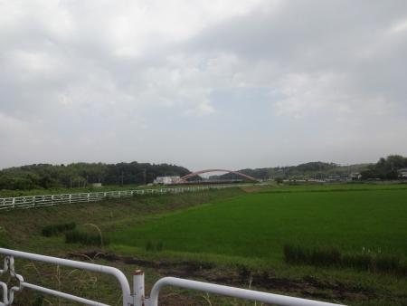 012双子橋